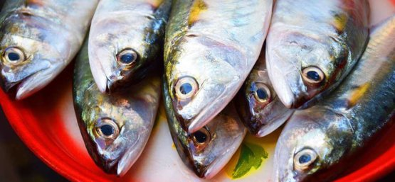 79 foods high in potassium healthsomeness for Potassium in fish
