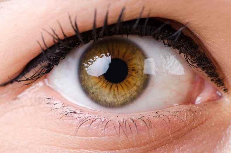 apricots help prevent eye damage