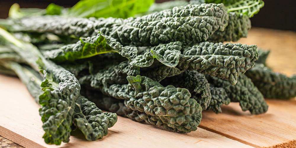 A Vitamin Contained In Leafy Green Vegetables 28 green vegetables that are great for your health june 2018 kale has often been considered by many people to be the most healthy food on the planet and rightly so personally i have never been a huge fan of eating workwithnaturefo