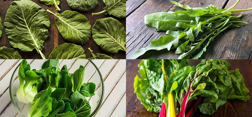 Vegetables Contain Calcium 27 vegetables high in calcium june 2018 27 vegetables high in calcium workwithnaturefo