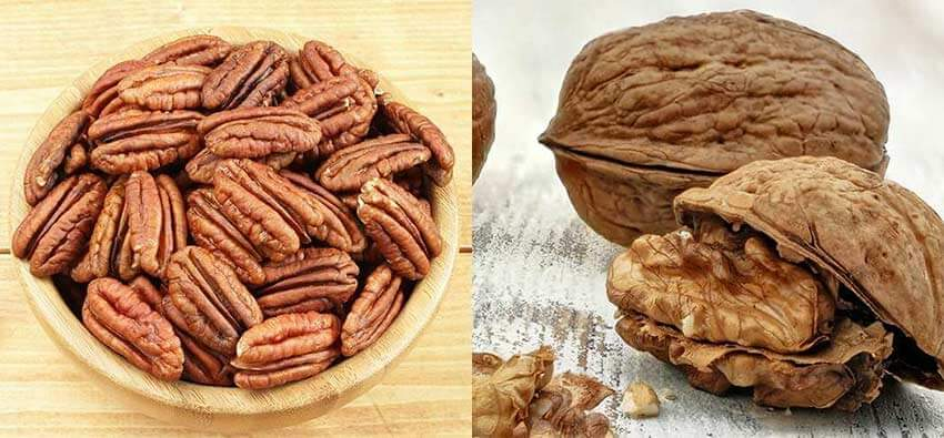 Walnuts vs pecans - which nut is better